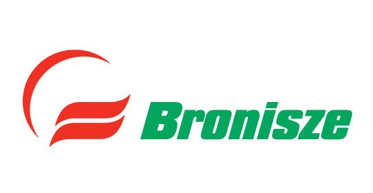 Bronisze